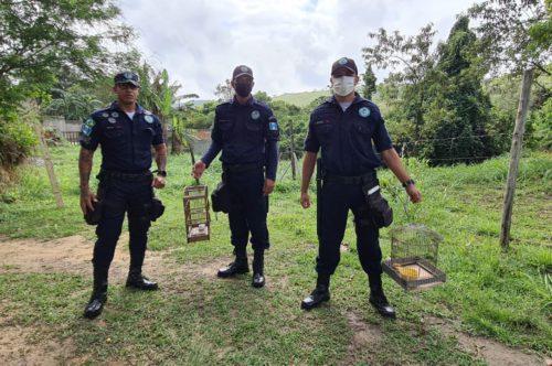 Secretaria do Ambiente faz soltura de pássaros mantidos ilegalmente